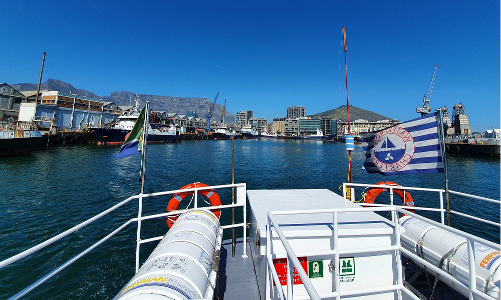 Waterfront Charters boat sailing in harbour with table mountain in the background